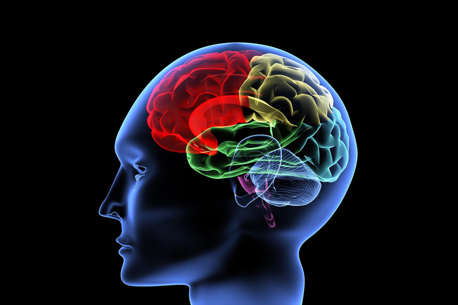Hypnose thérapeutique paramédicale